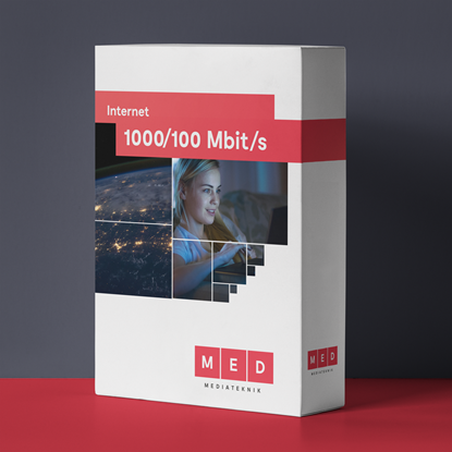 Bild på 1000/100 Mbit/s